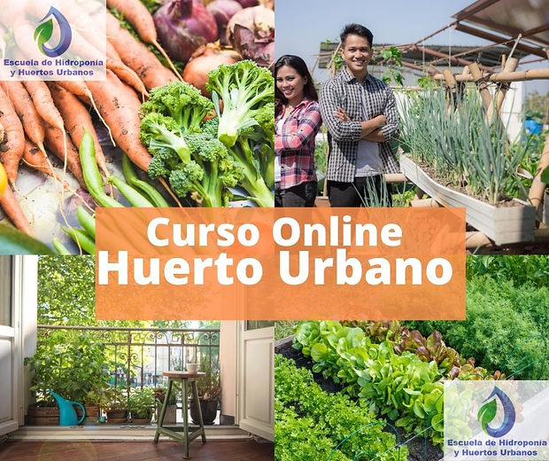 imagen  Curso Huerto Urbano Online.jpg