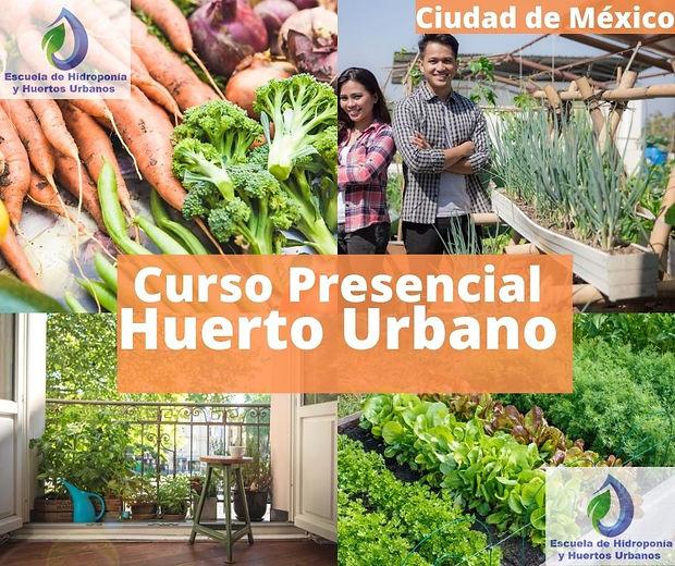 imagen- Huerto Urbano Presencial.jpg