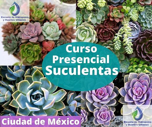 imagen Curso Suculentas Presencial.jpg