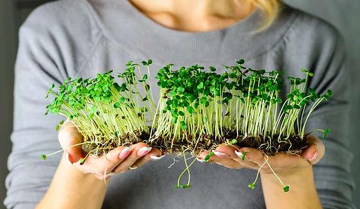 microgreens (1).jpg