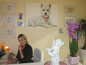 Hundesalon Köln Hundesalon Lilly Köln Hundepflegesalon Köln Hundefriseur Köln Hundezahnpflege Köln Hundezahnreinigung Köln