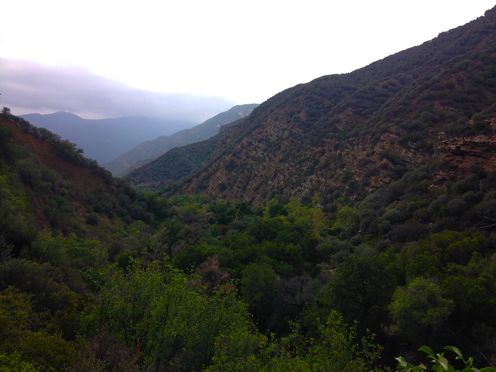 A breathtaking view of the Matilija Canyon. Many different types of trees cover the hillsides of each side of the canyon, as purple clouds loom overhead