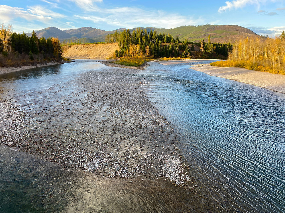 North Fork Flathead River in Columbia Falls, Montana
