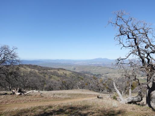 Trip Report: Ohlone Wilderness Trail
