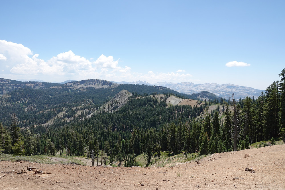 A view of the wilderness along the Tahoe Rim Trail in California (or maybe Nevada, who knows?!)