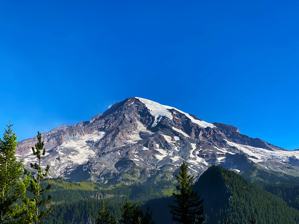 the majestic stratovolcano Mount Rainier, the fifth tallest mountain in the US, proudly stands above verdant green forests. It is covered with snow, even though it looks warm out. Mount Rainier National Park Washington