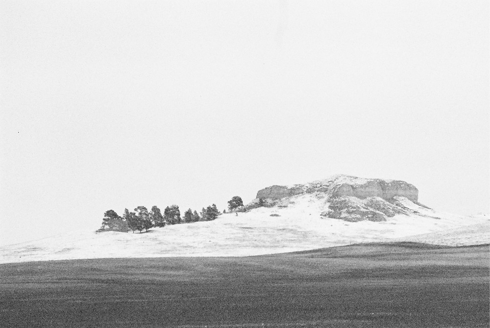 a beautiful black and white picture of a hillside in the Nebraska National Forest in Chadron, NE