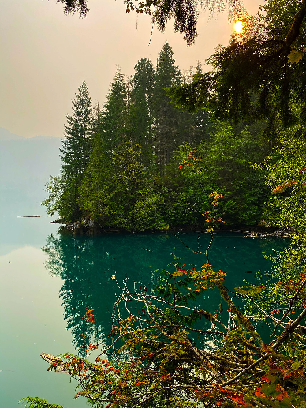 Baker Lake in Washington looking like a tropical paradise with waters as blue-green as the Caribbean, evergreen trees reaching all the way to the shore of the lake, and flowers everywhere