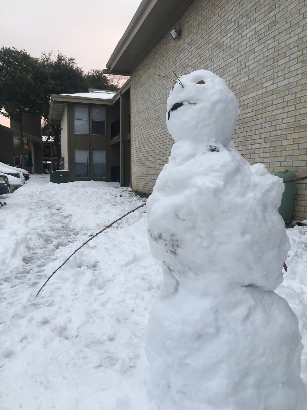 A rare snowman sighting in Austin Texas after the worst storm to hit the area in 72 years dumped over 6 inches of snow on the normally warm city