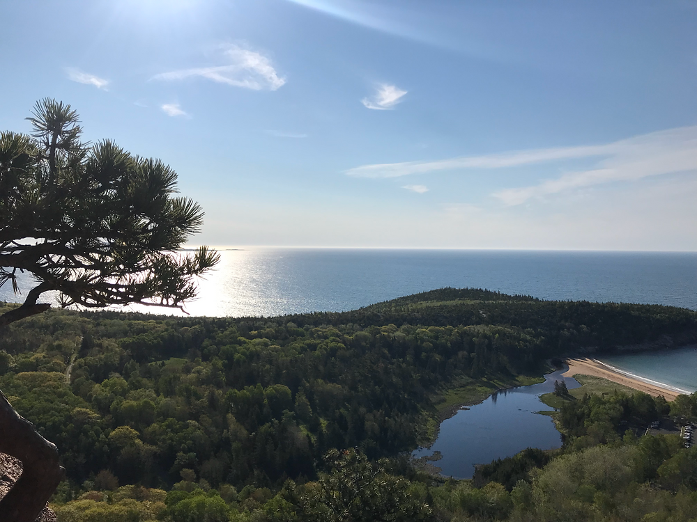 Beehive Trail in Acadia National Park, Maine presents an incredible vantage point of lush green forests extending out to a refleftive blue atlantic ocean, as several wispy clouds lurk overhead