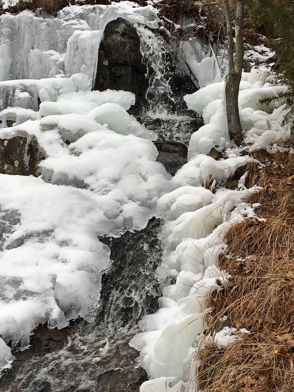 snow and ice covering a waterfall in the forest of the Middlesex Fells Reservation just outside Boston, Massachusetts