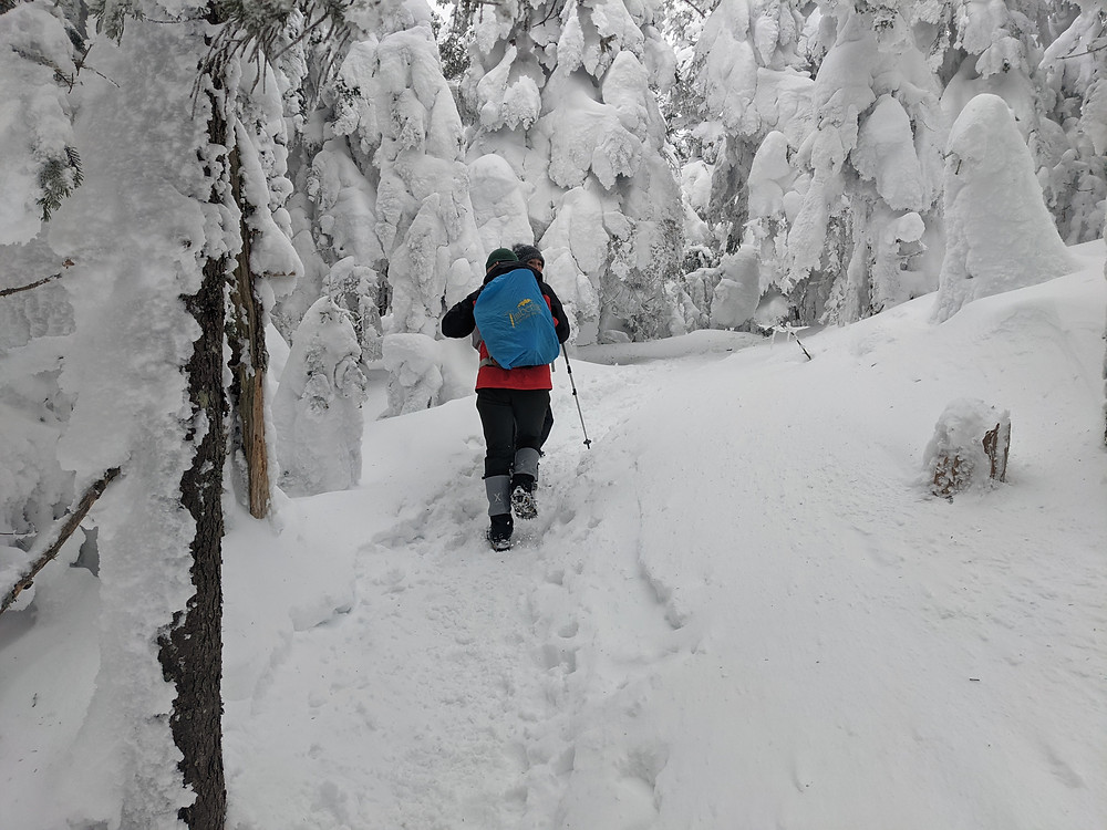 a well equipped hiker makes his way through a snowy forest
