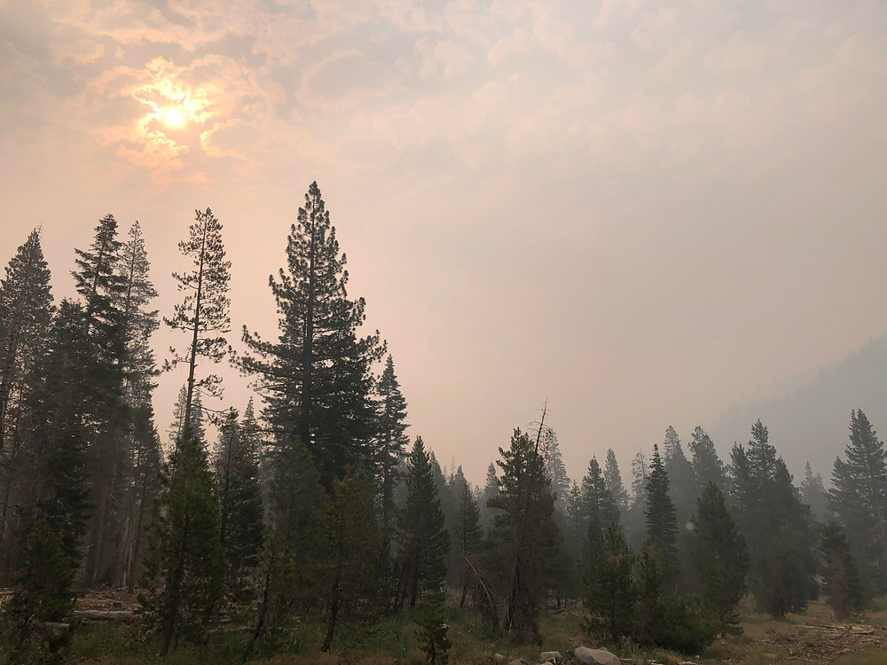 Raging wildfires nearby cause smoke to fill the air over the pine trees surrounding Lake Tahoe, totally obscuring the sun from shining down on the Tahoe Rim Trail