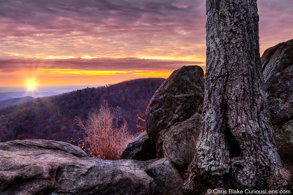 Hazel Mountain Overlook: Shenandoah National Park, VA. The sun is setting over purple mountains majesty, with a stately tree and rock in the foreground