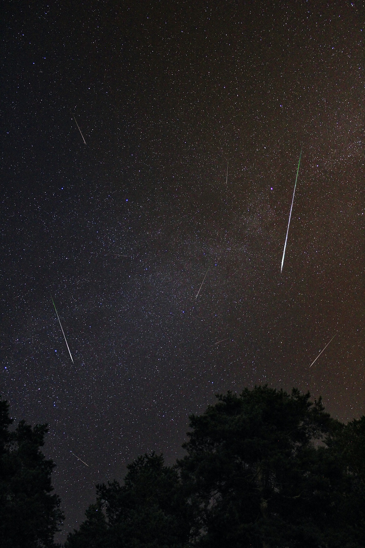 Perseid Meteor Shower peaking in August with dozens of trails of meteors streaking across the night sky