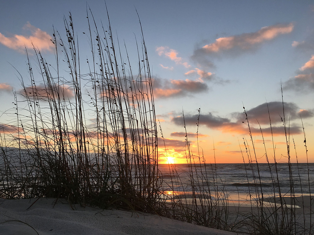 Sunset on the Saint Joseph Peninsula State Park in Northern Florida. Reeds on the sandy beach partially obscure the sun setting brilliantly over steely blue waters, throwing oranges and pinks across several low hanging clouds