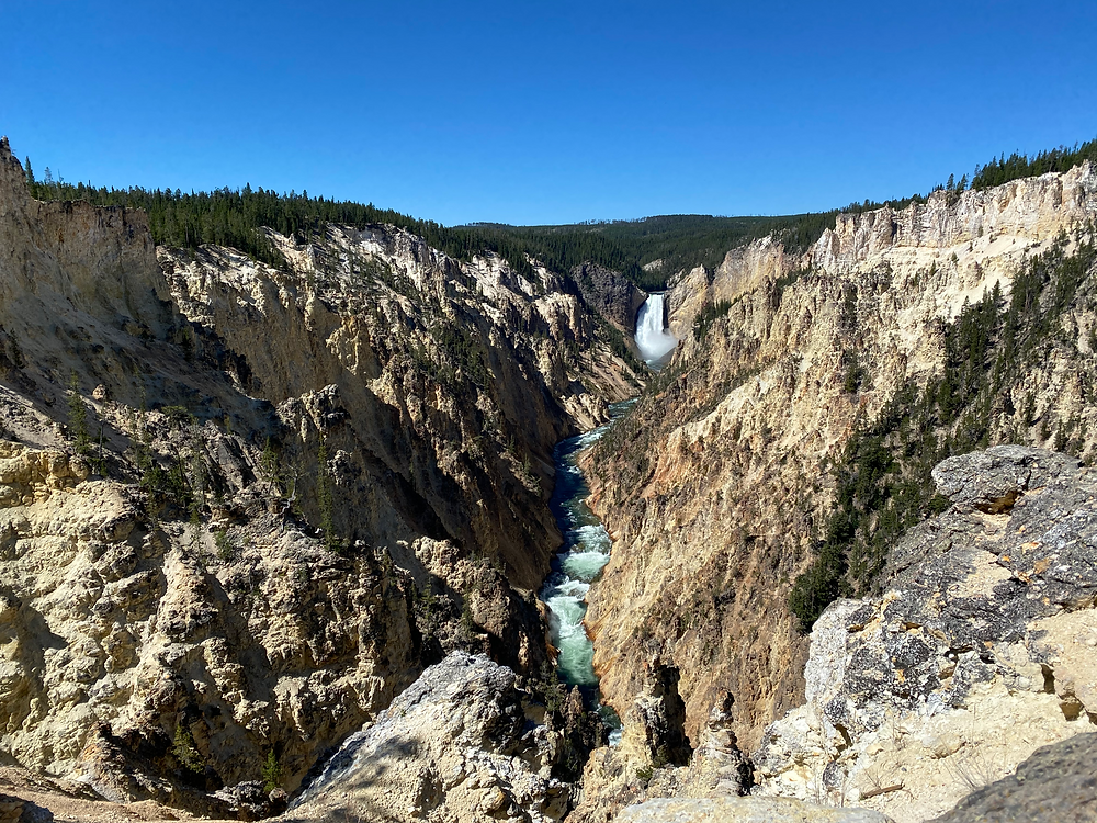 a monstrous cliffside vista, a crystal blue river flowing through a craggy rocky canyon, under a perfect clear blue sky. Yellowstone National Park in Wyoming