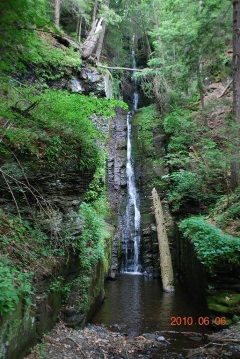 A skinny waterfall cascades through lush greenery, Silverthread Falls in Pennsylvania