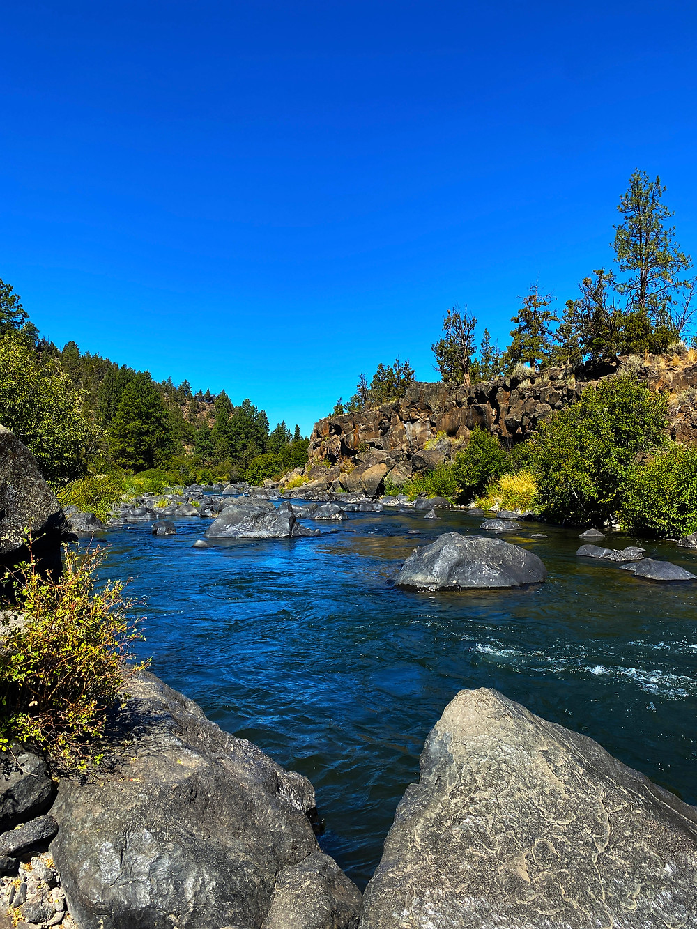 Blue skies over blue waters of the rocky, wooded Deschutes River in Deschutes National Forest, OR