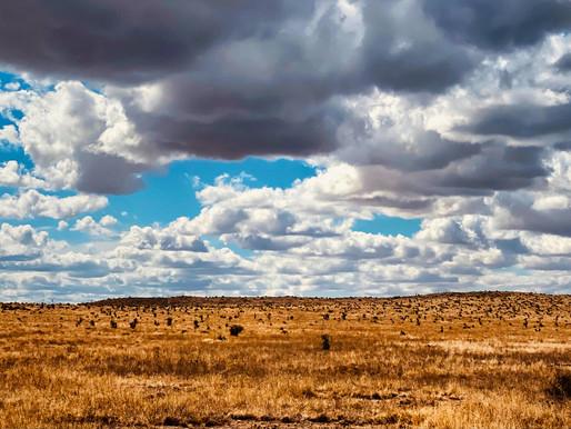 Bury My Heart in Big Bend National Park