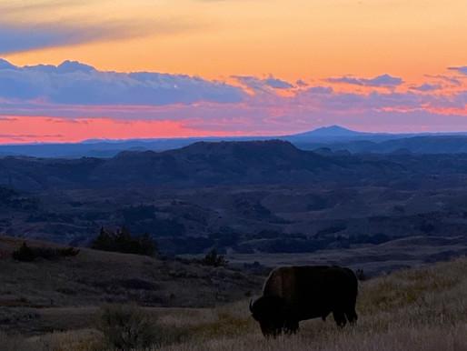 National Park News: September 2021