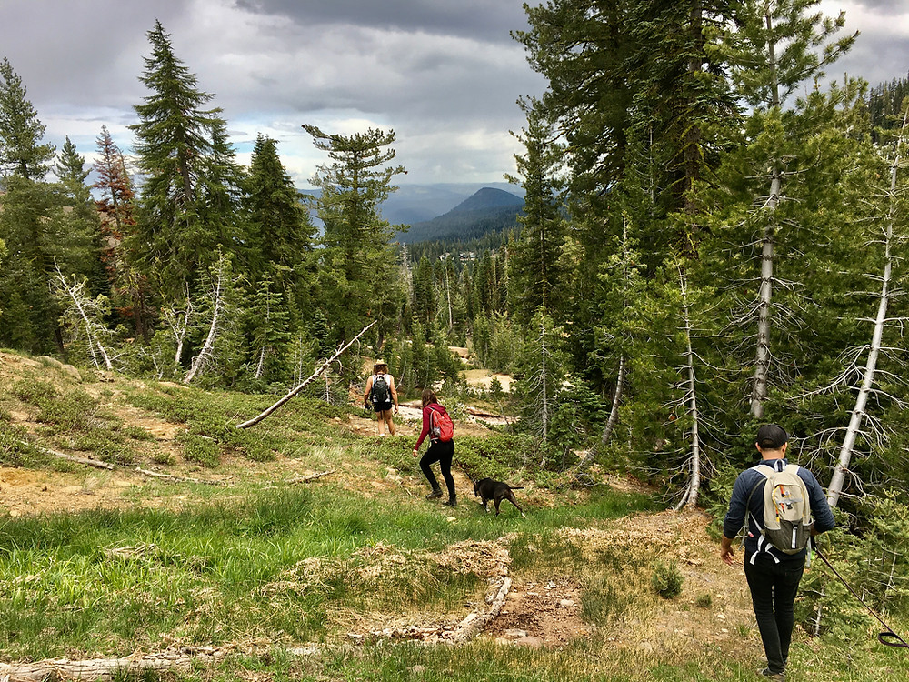 three hikers and a good dog traverse the sulfur-laden hillside of Lassen Volcanic National Park in northern California