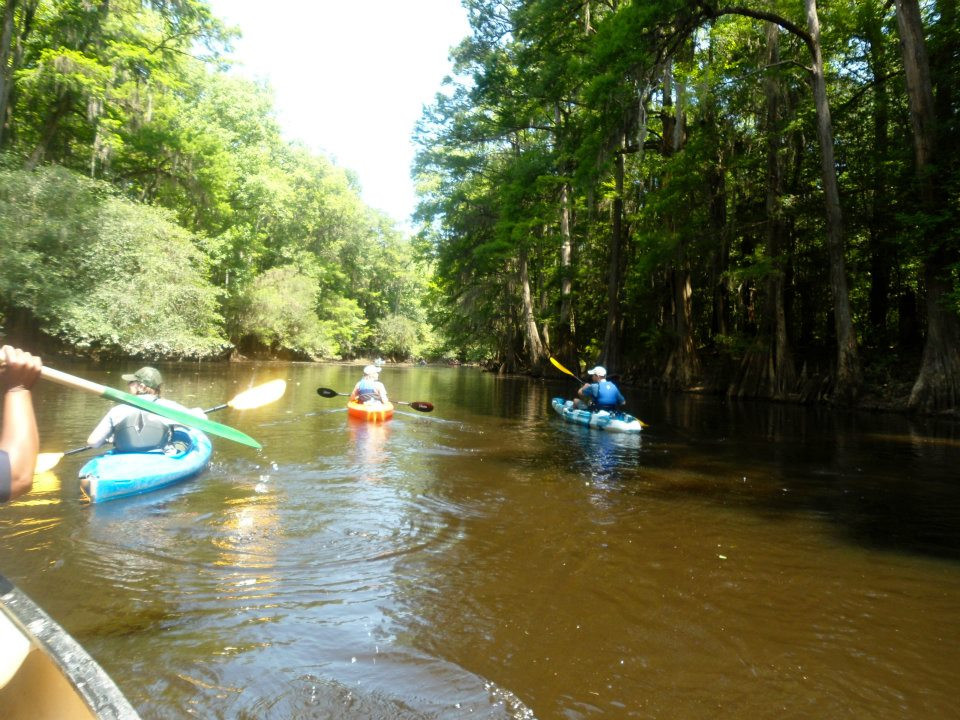 4 people kayaking down one of the waterways of Congaree National Park in South Carolina. Green trees loom above each side of the brown river