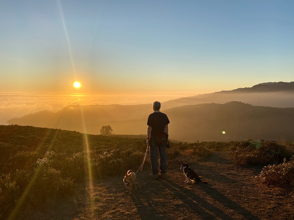 Watching the sun set with the dogs on Mount Tamalpias in Marin, California