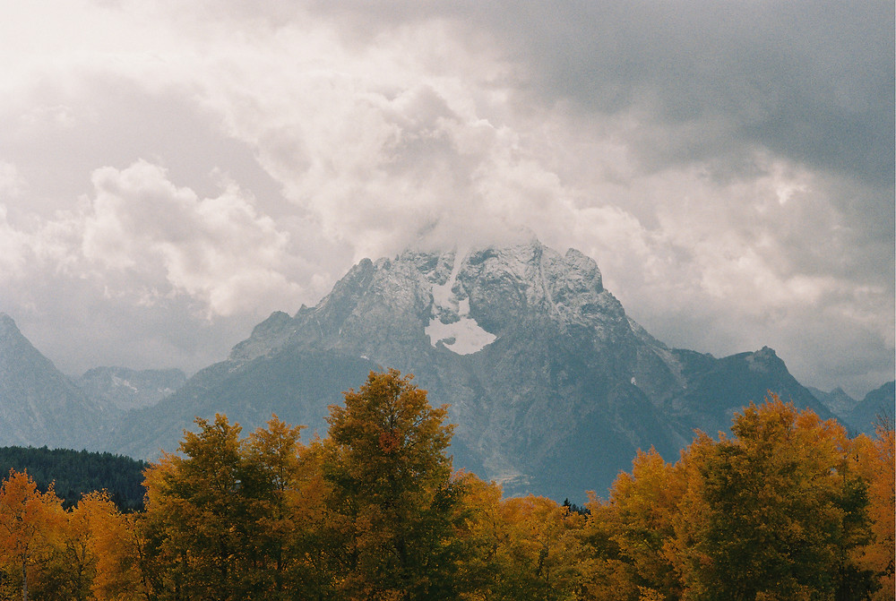 The mountains of Grant Teton National Park in Wyoming, looking seriously majestic reaching up to the clouds, looming over trees brimming with fall foliage in the foreground