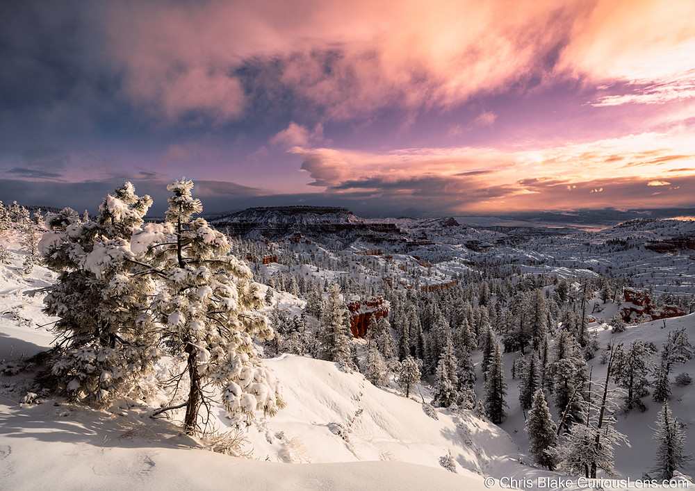 Wide view of Bryce Canyon in the wintertime. Snow is covering the trees and hoodoos, under a brilliant sky full of pinks and purples