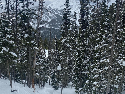 Winter Backcountry Camping Guide (Part 3)