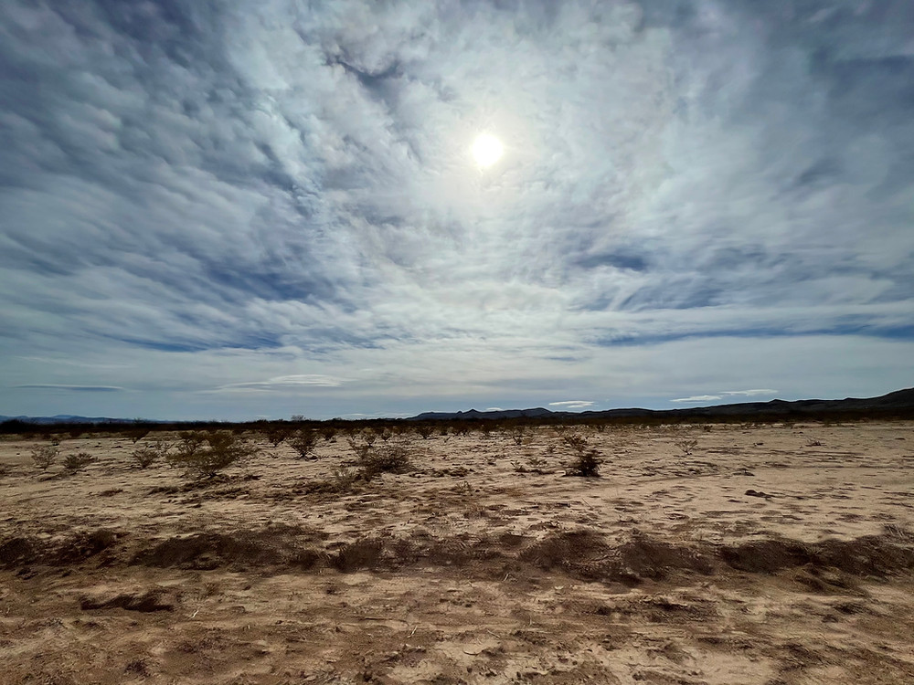 The desert sun beats down through wispy clouds on the cracked scrubby plains of the Chihuahuan Desert in Lobo, Texas