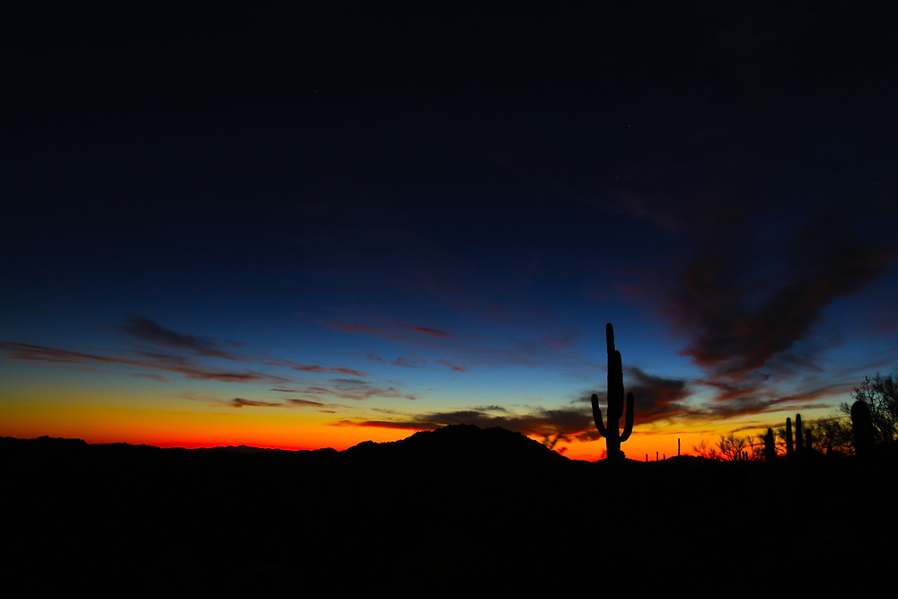 Sunset blasts oranges and yellows across the bottom of the horizon, as the darkness of night begins to overtake the sky. A lone Saguaro rises majestically out of the desert. Organ Pipe National Monument, Arizona