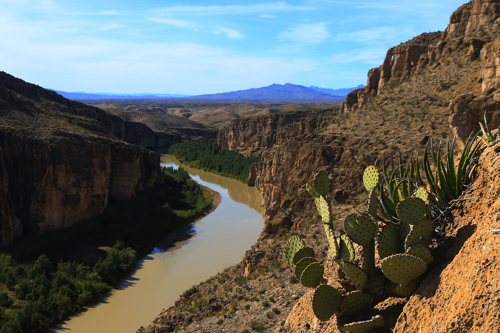 The Rio Grande carves its way through a ruddy brown canyon lined with Prickly Pear Cactus in Big Bend National Park, Texas. Purple Mountains in the distance contrast beautifully with the blue sky above
