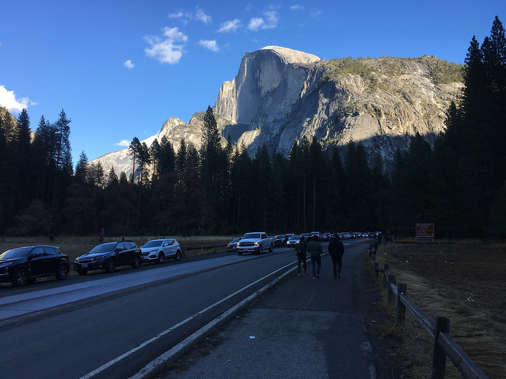 Oversized crowds at Yosemite National Park in California have led to cars needing to park all up and down the main access roads.