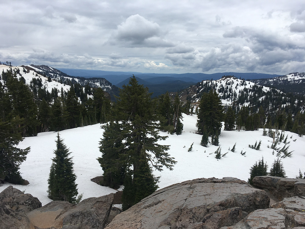 9000 feet up in elevation at Lassen Volcanic National Park. Pine trees dot a snowy mountaintop. A beautiful view for miles