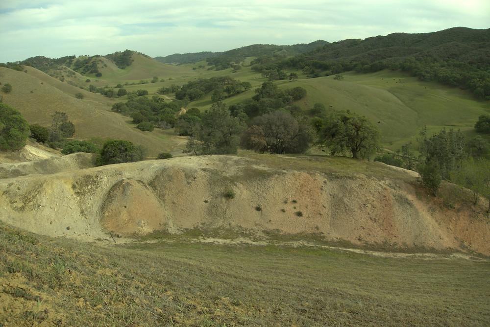 Short, stubby sandstone cliffs at Black Diamond Mines Regional Preserve in Antioch, CA