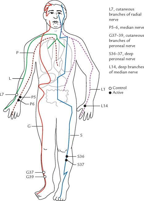 lung meridian figure.jpg