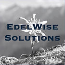 Logo EdelWise Solutions Group Variante 2