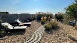 Suntrap garden.