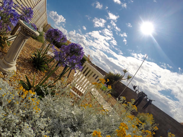 Idylic garden