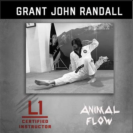 Animal Flow Instructor Grant