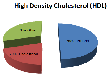Your Cholesterol – What to Know!