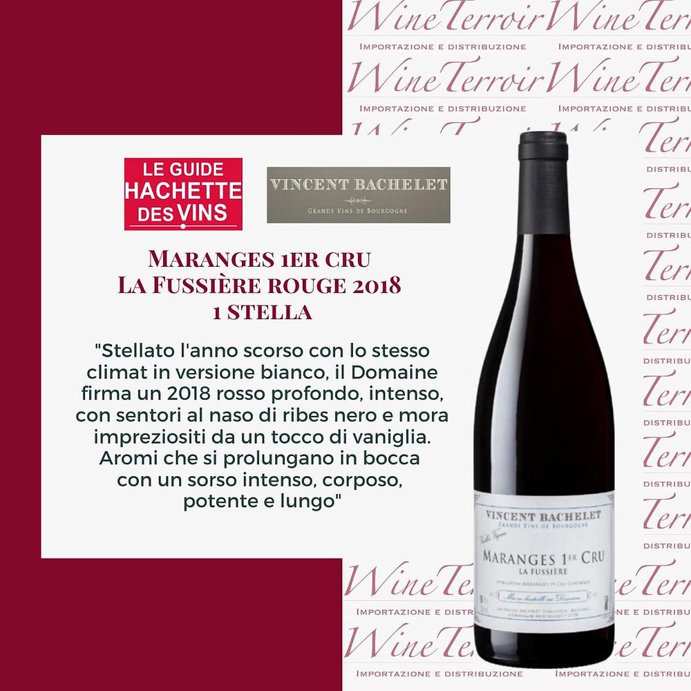 domaine vincent bachelet maranges 1er cru la fussiere premio hachette 1 stella wine terroir importazione distribuzione vino
