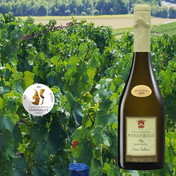 Champagne Patrick Boivin Brut Cuvee Tradition Premier Cru Millesimé 1999 - Premi e punteggi 2021