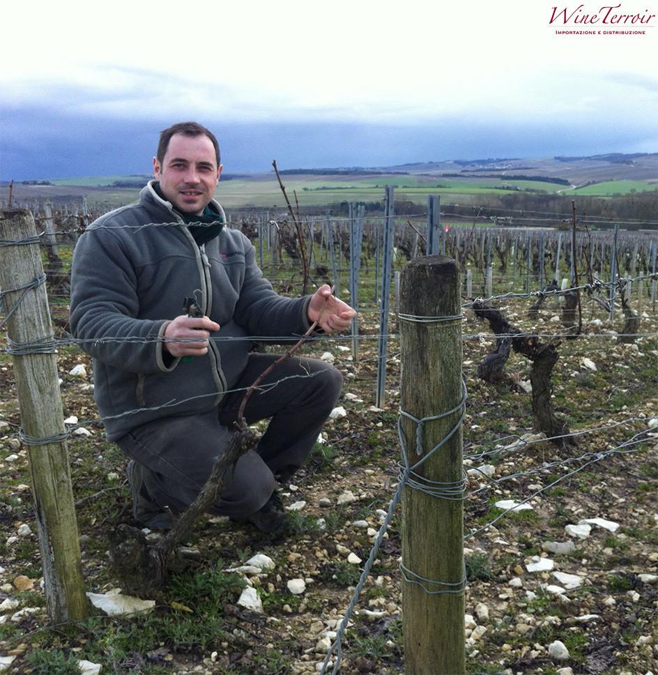 Domaine Christophe chablis sebastien christophe vigna chardonnay