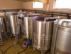 Domaine Jean Vullien - Savoia - Foto della cantina di vinificazione