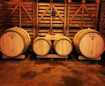 Champagne Huiban - Barrique per affinamento dei vini base in cantina