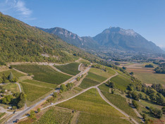 Domaine Jean Vullien - Savoia - vista dei vigneti dall'alto