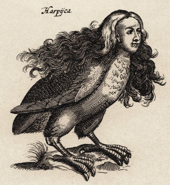Illustraition of a Harpy   The Dilettante